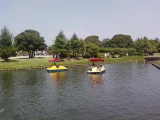 海南こどもの国の水上自転車